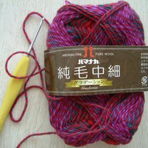 (純毛中細・段染め糸で編む)はりねずみ6、7体め