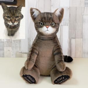 キジトラ猫『トムちゃん』のウェイトキャット
