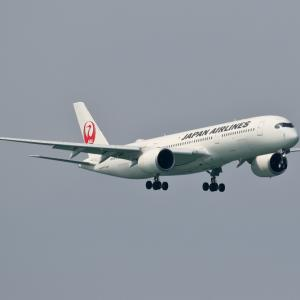 JAL A350-900 首里城再建応援デカール機