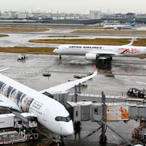 2019年11月羽田遠征 その12 2機のJAL A350
