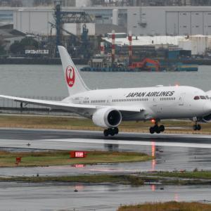 2019年11月羽田遠征 その16 JAL B787-8のランディング