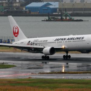 2019年11月羽田遠征 その17 JALラグビー日本代表応援ジェット
