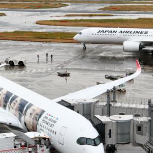 2機のJAL A350-900 ~駐機中のTHANKS ARASHI JET~