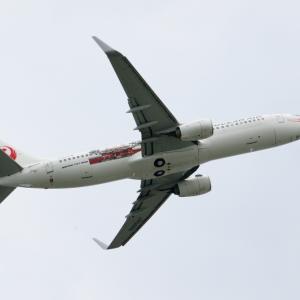 JTA 「首里城」特別デザイン機の離陸