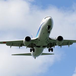 那覇空港第1滑走路へ着陸するANA B737-800