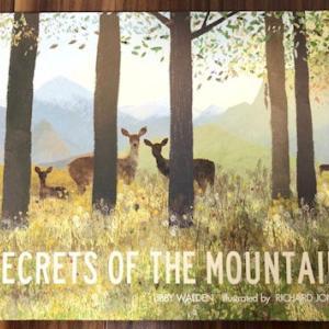 癒しの絵本「SECRETS OF THE MOUNTAIN」