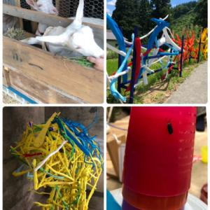 大地の芸術祭…熱い夏