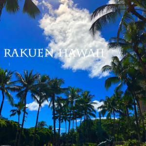 2018・9子連れハワイ・7日目④【ロイヤルハワイアンセンター・フードコートで遅めのランチ その2】