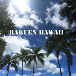 2018・9子連れハワイ・8日目③【とうとうハワイとお別れ・空港到着~搭乗まで】