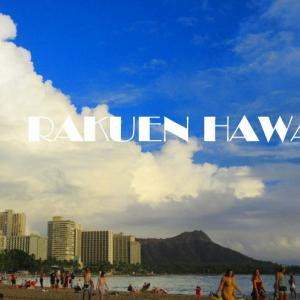 ハワイからの小包~長い長い物語~その①