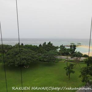 2019・7 沖縄子連れ旅行・3日目②【大迫力の美ら海水族館!】