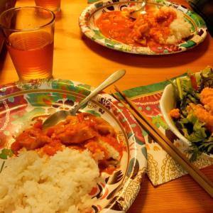 インド風カレーを作りましたよ!