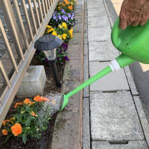 The Garden : 小さな種、大きな結果
