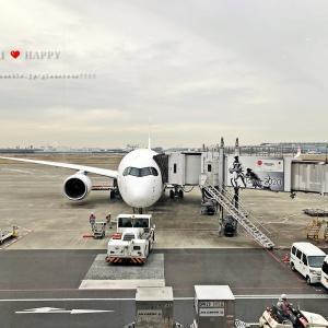 JAL最新機材A350で年末の福岡旅行へ♪嵐ジェットも!