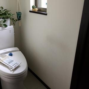100均deここまで出来る、トイレの壁全面リメイクシート