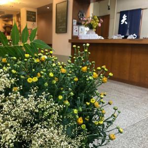 北海道のお花を