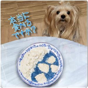 青いカレーを食べてみた~だけじゃぁない。