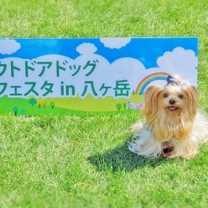 プチ旅行☆Outdoor Dog Festa in 八ヶ岳(ストーリー)☆