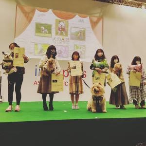 「犬の笑顔フォトコンテスト」で準グランプリをいただきました(^^)