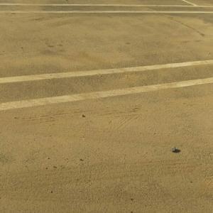 目と鼻の先のおうちは車が浸水