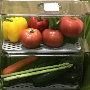 冷蔵庫 の 野菜畑