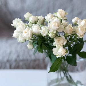 お花に癒されて、、、