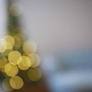 静かに…Merry Christmas 🎄