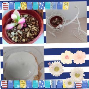 桜吹雪とスフレパンケーキ♪