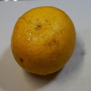 柑橘類のパイ