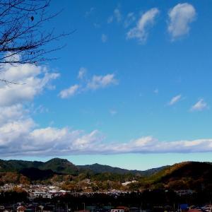 五日市の楓を堪能 / フォトスケッチ