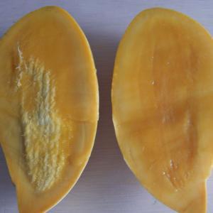 完熟マンゴー こんな食べ方もあります