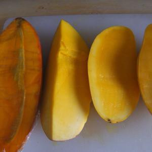 マンゴーの美味しさ食べ比べ