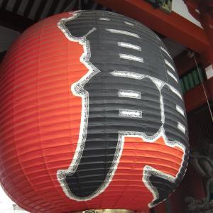 東京観光を懐かしむ