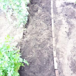 ブリコエド作業場の庭を整備してミタ。花壇?を広げて野菜を作るぞー!!