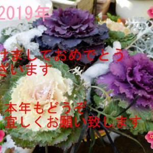 ~ 総集編 2019年の1月前半 (゚ロ゚;)エェッ!?~