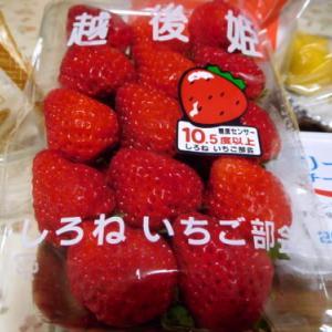 イチゴの赤に誘われて (o^∇^o)ノ