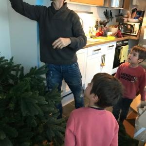 【クリスマスツリー】家族で飾ってみた結果