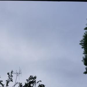 梅雨空…火曜日です