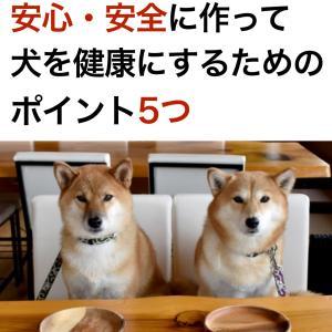 無料で読める:犬の手作りごはん初心者向け基本テキスト配布開始
