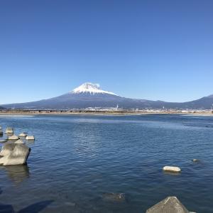 富士川左岸にて