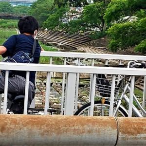 川を見る少年