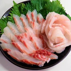 ニザダイ(サンノジ)は不味い魚なのか?