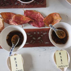 台湾茶講座&テイスティングの会終了