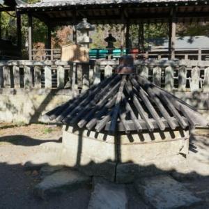 山中湖1周ウォーキングと上田城跡-4