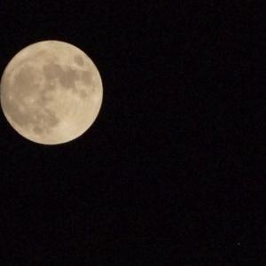 中秋の名月と十五夜と満月と