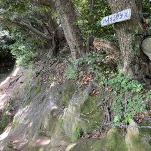 鷹取山トレッキングその2 鎌倉時代もあり
