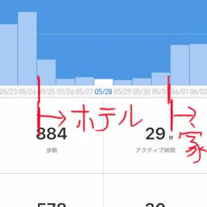 【日本自宅隔離中】隔離期間の歩行数