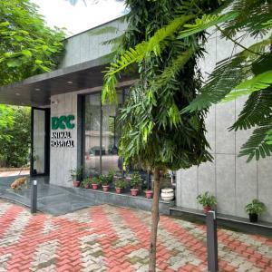 DCC 動物病院