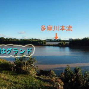 台風翌日の多摩川