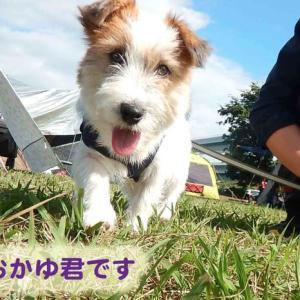 おーきチャンネル!